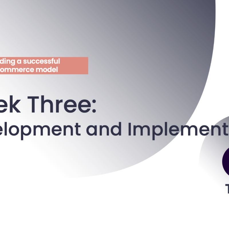 FIPP and Tipser's e-commerce course Week 3: Development & Implementation